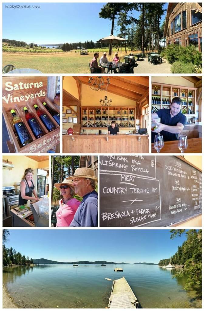 Saturna Winery kake2kale