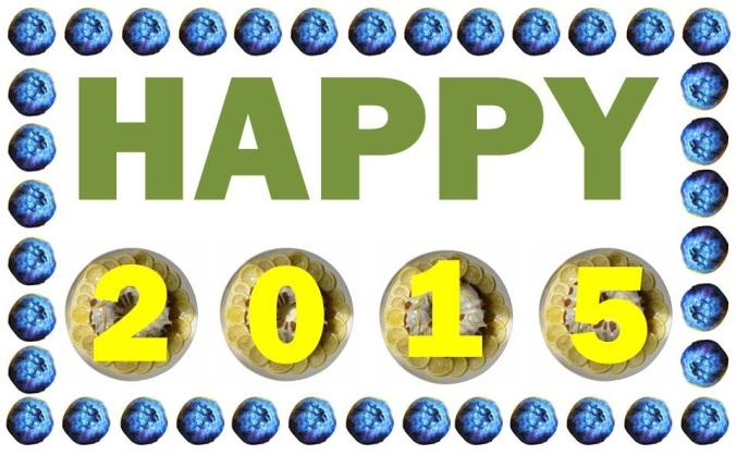 Happy 2015 v2
