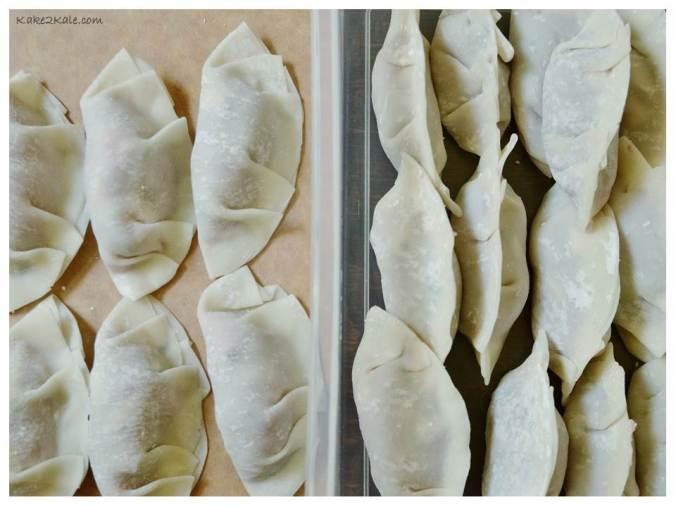 Dumplings 3 Kake2Kale