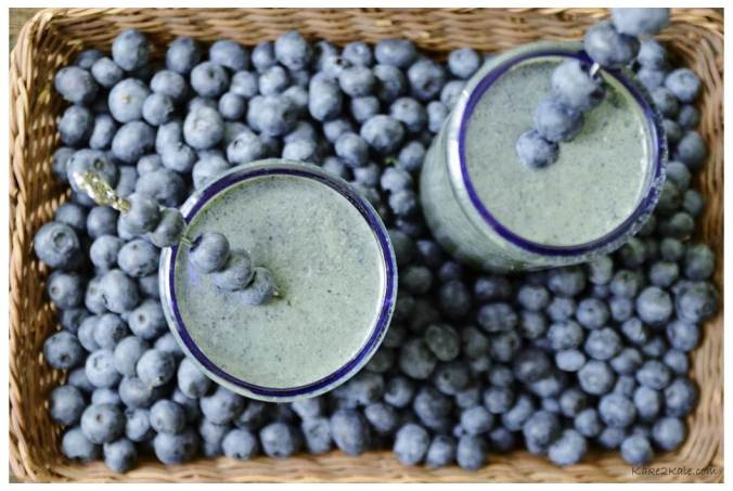 Blueberry Coconut Smoothie by Kake2Kale.com