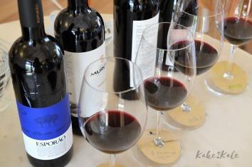 Kake2Kale Alentejo Portugal - wine tasting